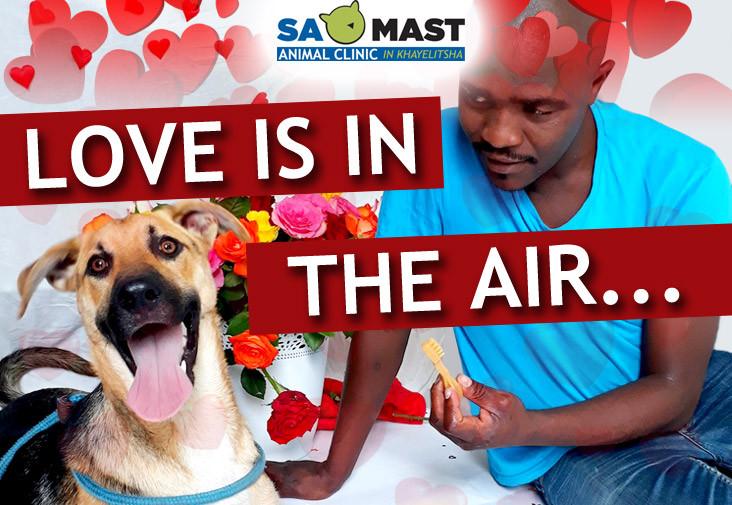 SAMAST Valentines Heading