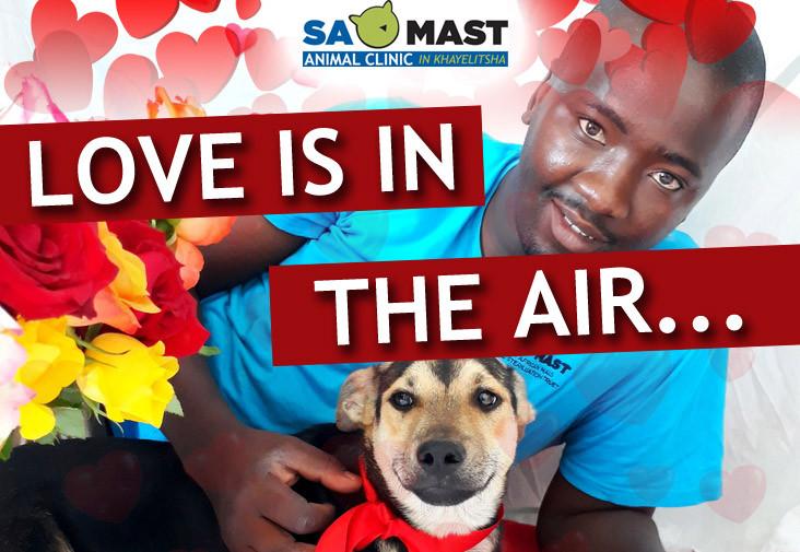 SAMAST Valentines Day