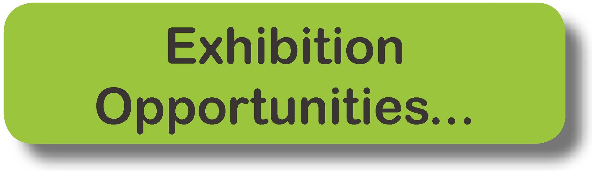 Exhibition Opportunities